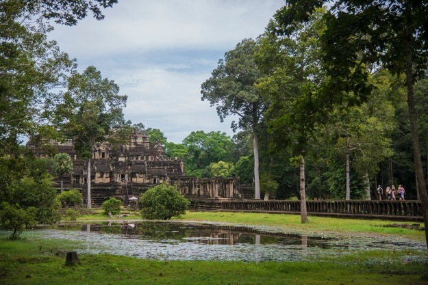 Buffalo - Angkor A